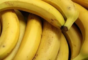 бананы, импорт,Эквадор, муха-горбатка
