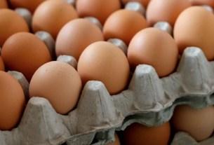 Дивеевское,антибиотики,яйцо