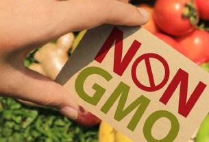 рациональное питание, ГМО,