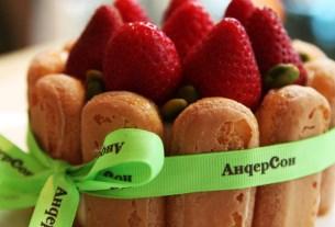 «АндерСон», заморозка, торты, детские кафе, Анастасия Татулова