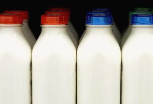 «МилкОм», Наталья Кирьянова, молоко,сорта молока
