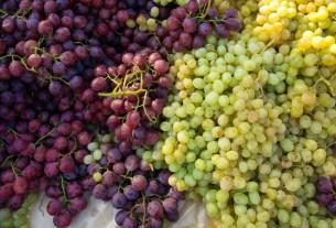 Владимир Викулов, виноград Узбекистан, сладкий виноград