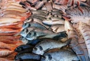 Александр Фомин, северная рыба, питание, омега-3