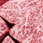 Вагю, говядина, мясо