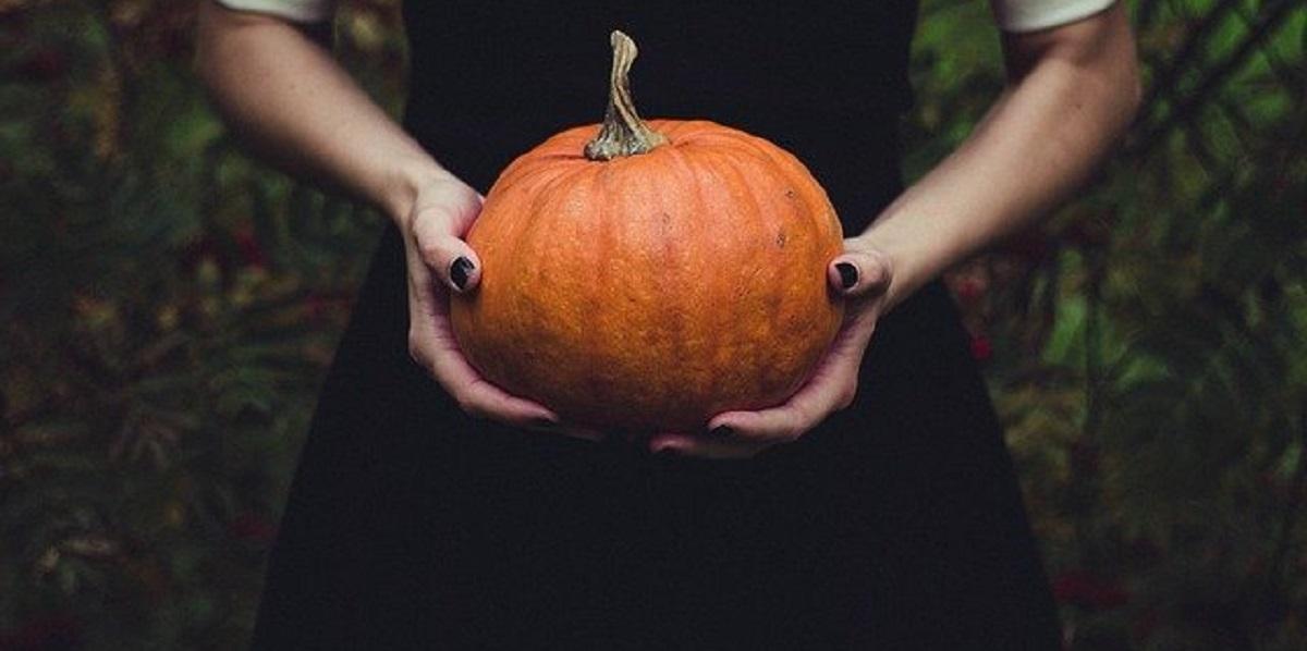 тыквы, Хэллоуин, корм для лошадей