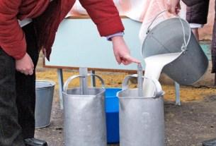Алтайский край, молоко, картельный сговор на цены