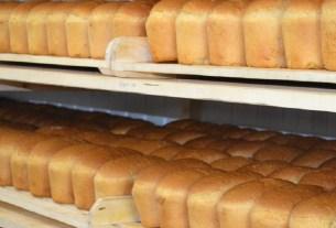 Никита Харлов, хлеб не голова, неправильное питание