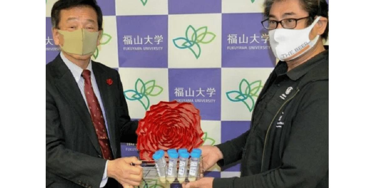 Япония, пивовары, пиво с дрожжами из цветков розы