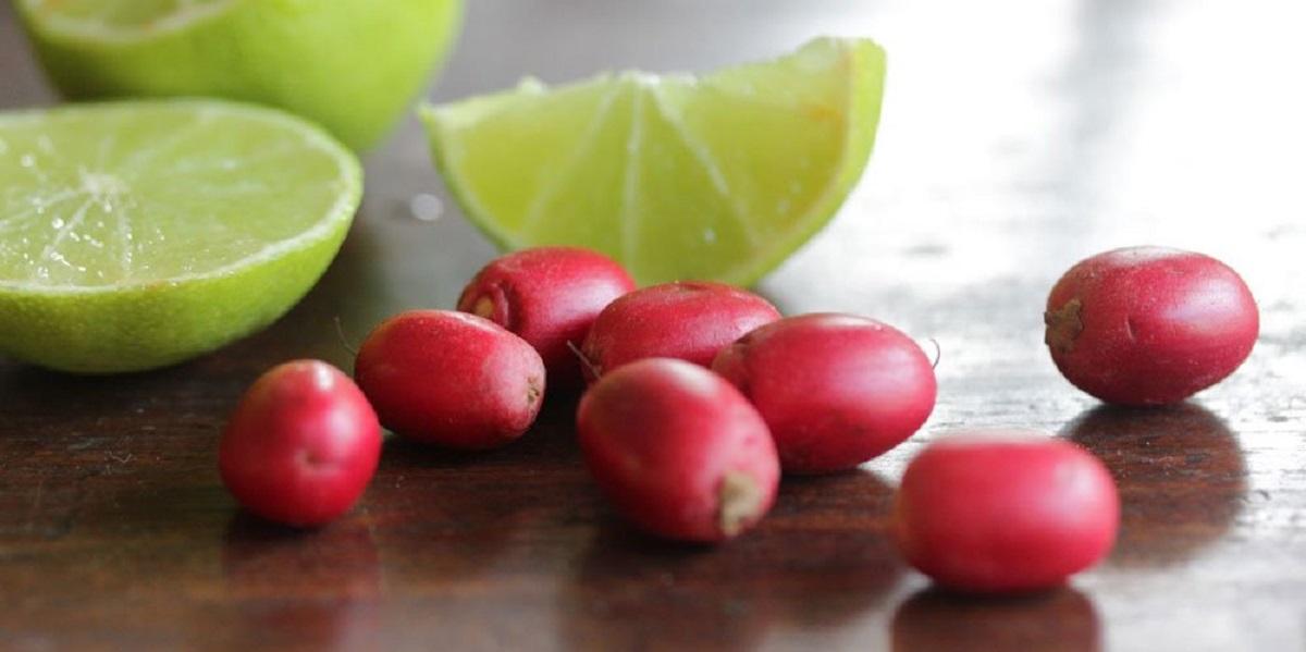 Путерия, обман вкуса, «Волшебные» ягоды, Synsepalum dulcificum, кислое на сладкое