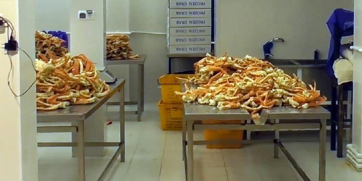 Крабы, креветки, переработка, подпольный цех, морепродукты, Приморье, ФСБ
