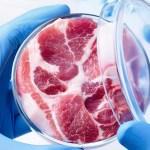 Искусственное мясо, новая разработка, степень жирности, склеивание листов искусственного мяса, Канада