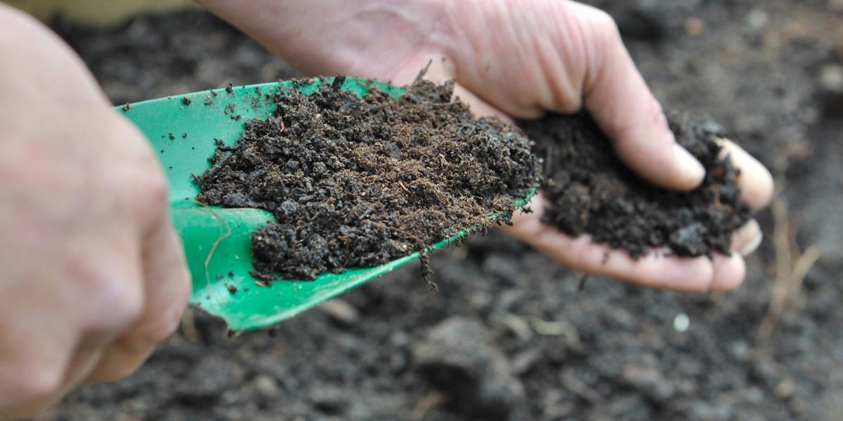 органические удобрения, польза удобрений, ускоритель урожая
