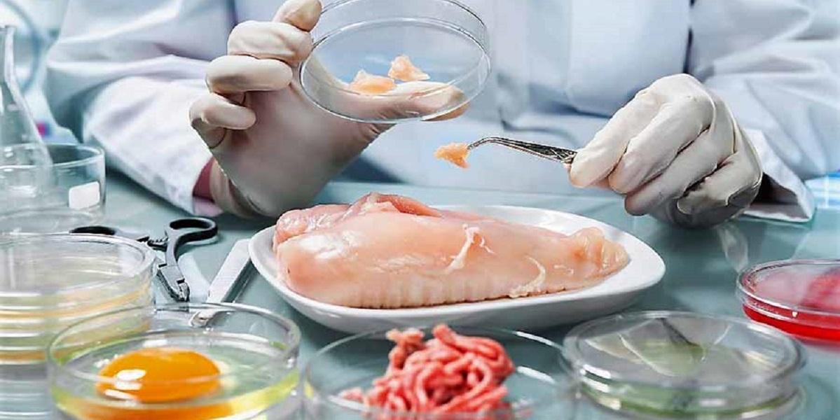ДГТУ, сальмонелла, борьба с отравлениями, пробиотики против сальмонеллы,куриное мясо