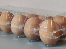 Яйца, дезинфекция, новая технология, сальмонелла, Сергей Соковнин, упакованные яйца