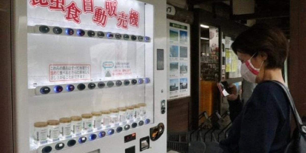 вендинг, жаренные сверчки, насекомые в автомате, Япония, Art Studio Wao