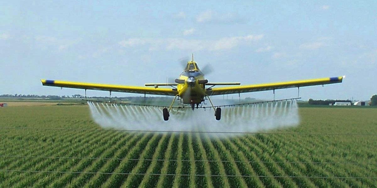 пестициды, Мишустин, ужесточение ввоза