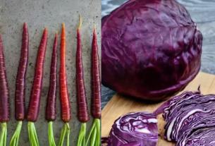 Морковь, капуста