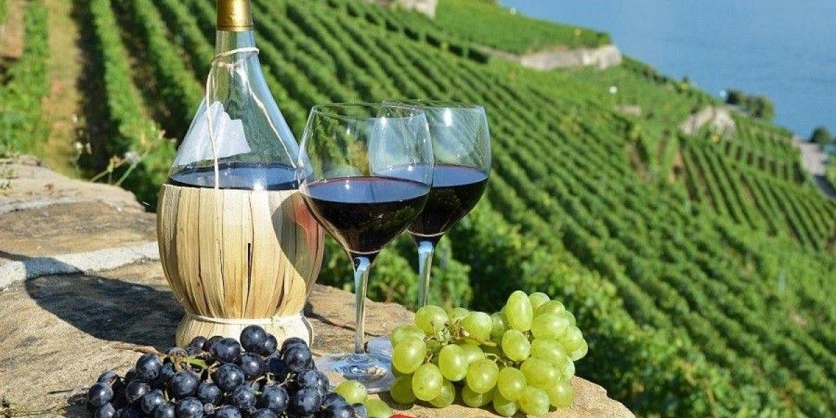 Госдума, законопроект, вино, кубанское вино, ЗГУ