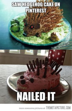 hedgehog-cake-pinterest-fail
