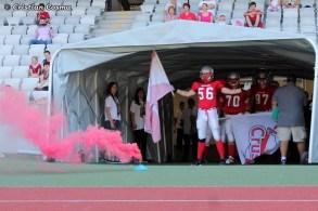 Cluj Crusaders - 89 Timisoara_2013_06_16_016