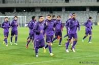 Pandurii Tg Jiu - Fiorentina_2013_11_06_053