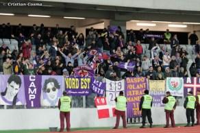 Pandurii Tg Jiu - Fiorentina_2013_11_07_212