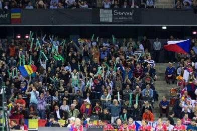 Suporteri romani @ FED Cup