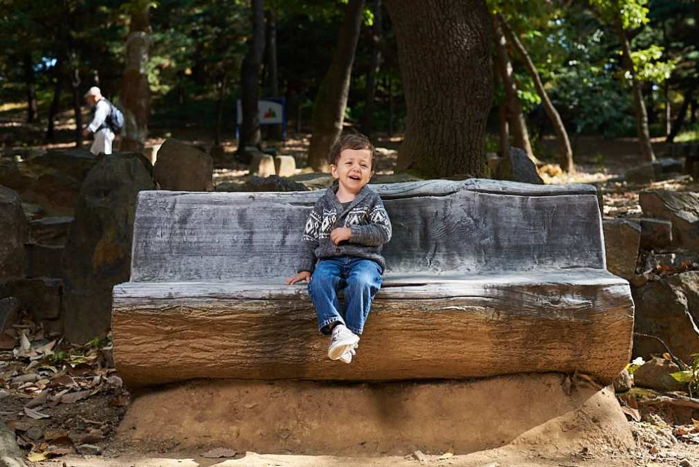 Toddler portrait on a wooden bench in a park