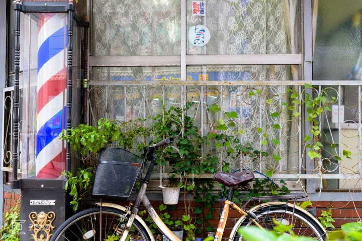Old city bicycle left pray to greenery
