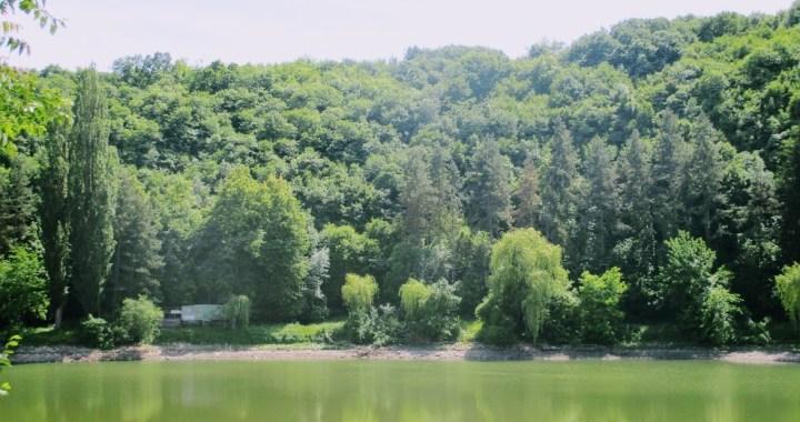 ,,O zi cat o vacanta,, (3): Ce sa vezi si ce sa faci in Plevna?