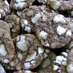 Biscoito craquelado