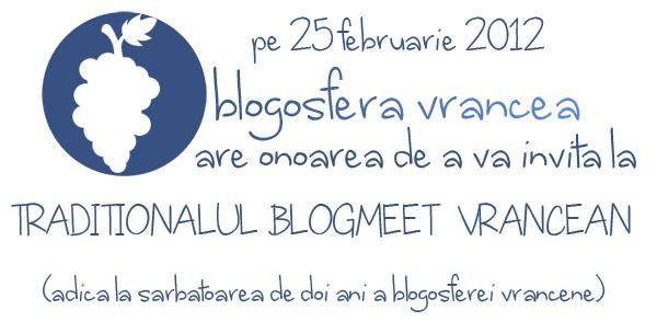 doi ani de blogosfera vranceana