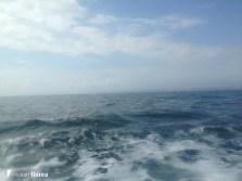 aventura pe o nava cu panze - constanta varna 47