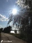 insula de pe lacul morii (6)