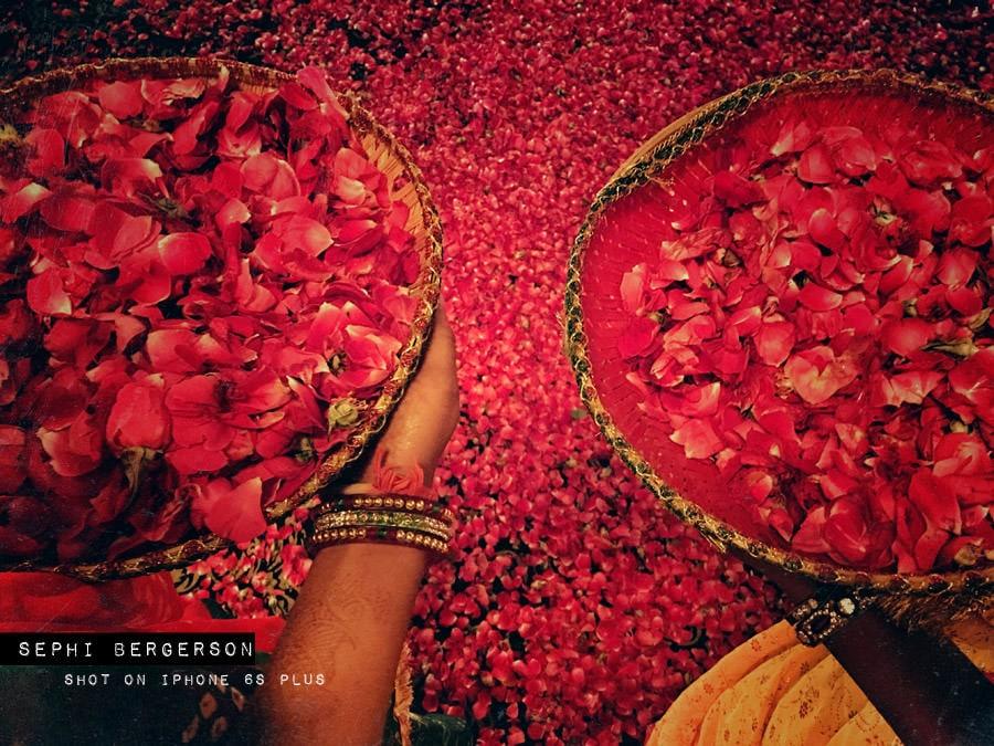 nunta fotografiata doar cu iPhone-ul 1