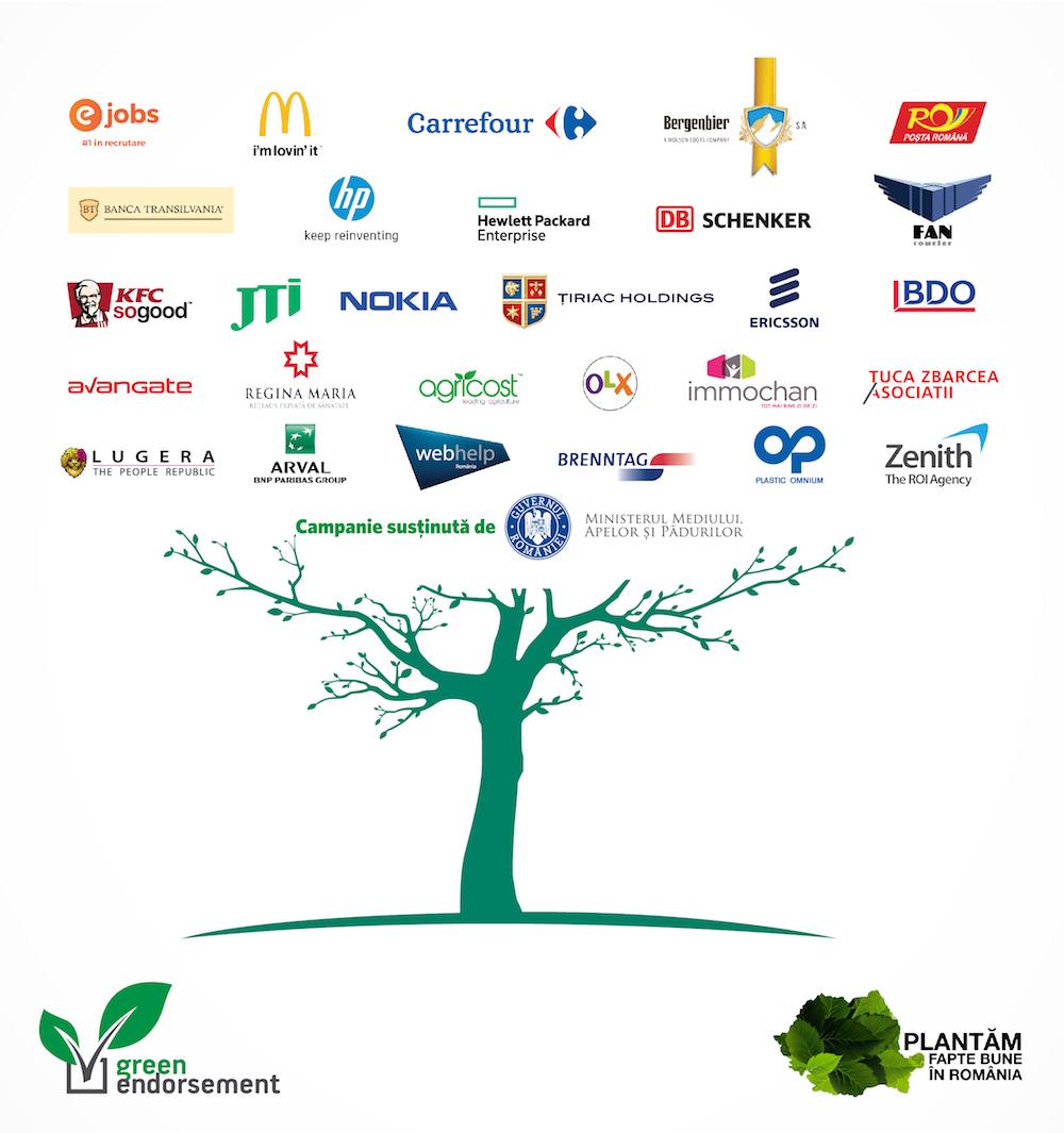 voluntariat GREEN ENDORSEMENT