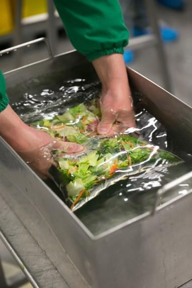 cum se fabrica salatele de la McDonalds