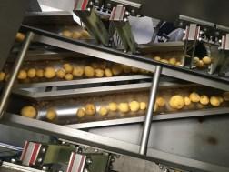 cum se transforma cartofii in chipsuri lay's