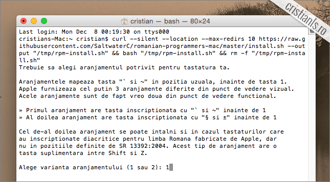 romanian programmers