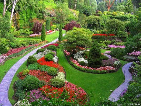 ¿Cómo estás plantando en el jardín de tu vida?