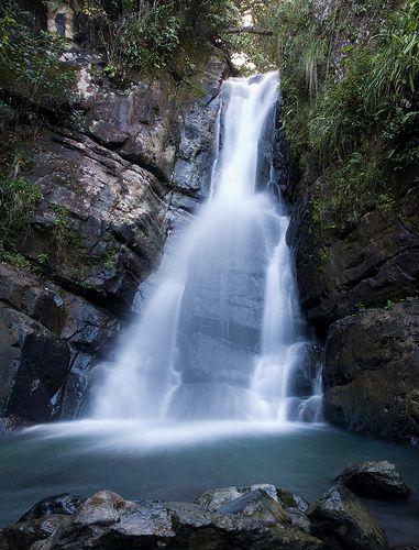 El Yunque de Luquillo, Puerto Rico