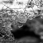 La cultura de la violencia
