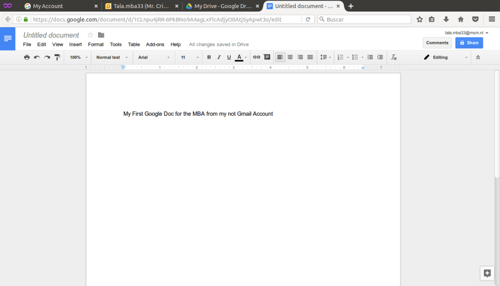 New Google Docs Document