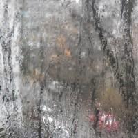 Rain - View from my window