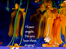 distorted flowers appear as angels