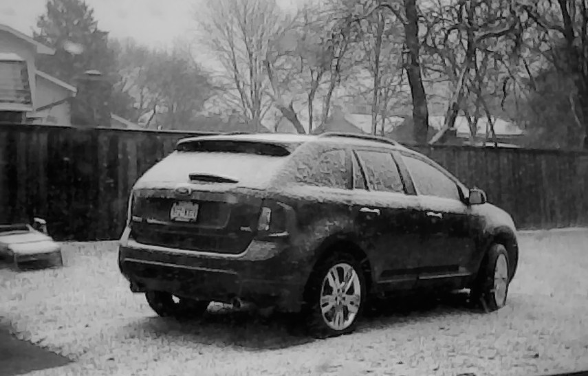 snow-in-texas_25978437672_o-bw