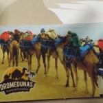 Novo ingresso Dromedunas