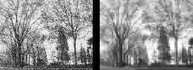 cristinaarce_art_grano_pixel