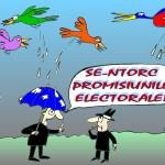SE-NTORC-PROMISIUNILE-ELECTORALE