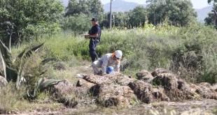 Reducen el tiempo para reparación de ordeñas tras explosión de Tlahuelilpan